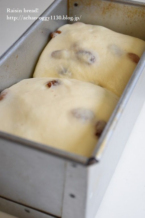 bread20190331a