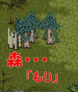 森〜〜〜〜〜