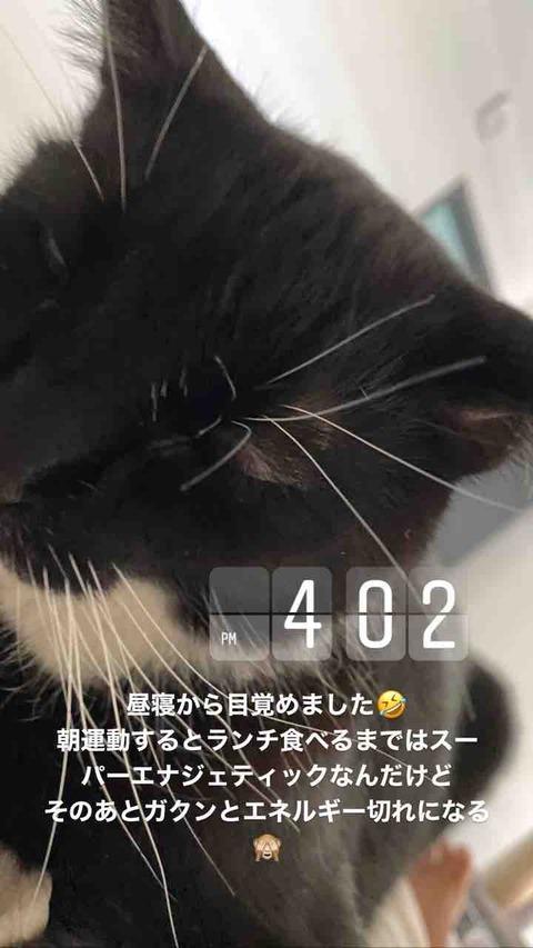 IMG_9317
