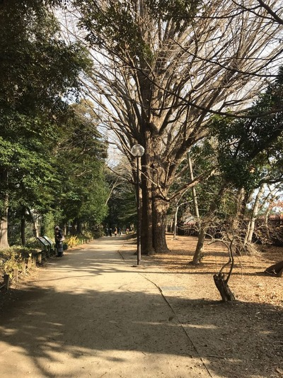 新宿御苑01