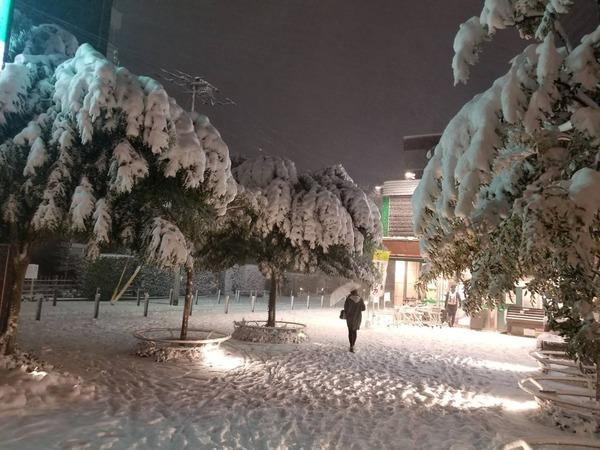 0122雪03