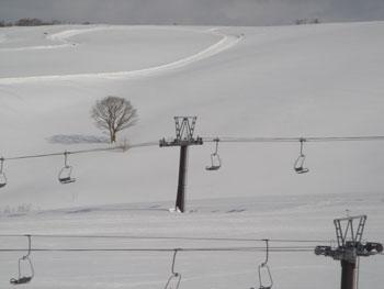 北海道001
