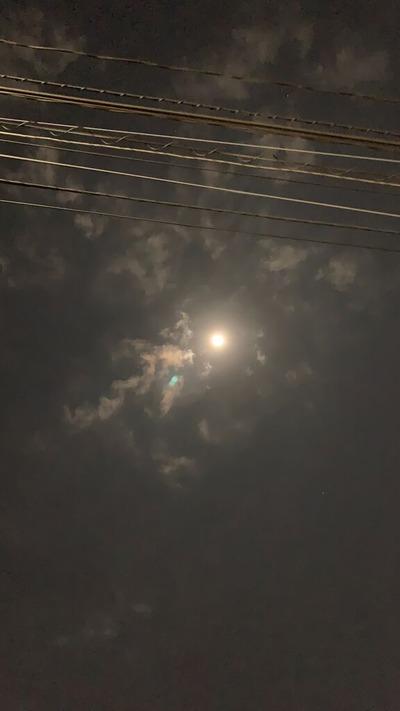 満月-1日