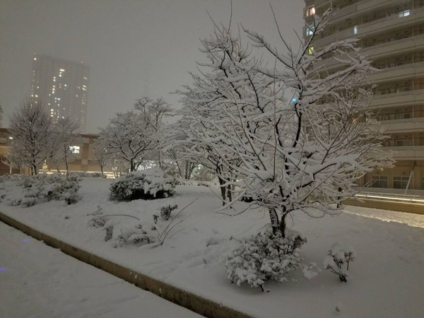 0122雪06