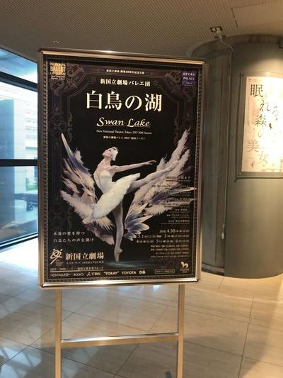 新国立劇場白鳥