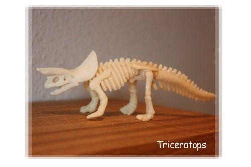 torikeratopusu1