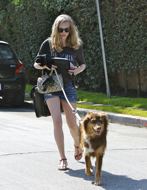 Amanda Seyfried walking her doggie (1)