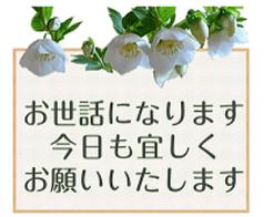 メッセージ 02