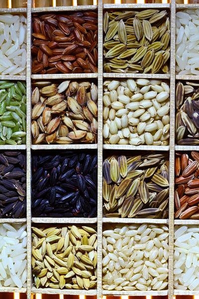 400px-Rice_diversity