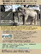 象チラシ表