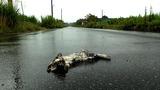 暴风截图201212312773744
