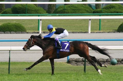 Deep_Impact(horse)20060430R1