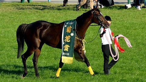 第76回菊花賞の優勝レイを着装した勝利馬キタサンブラック