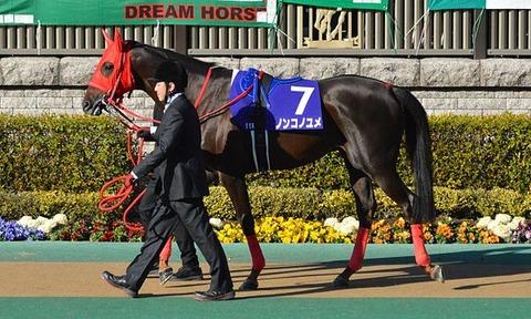 Nonkono-Yume_February-Stakes_2016