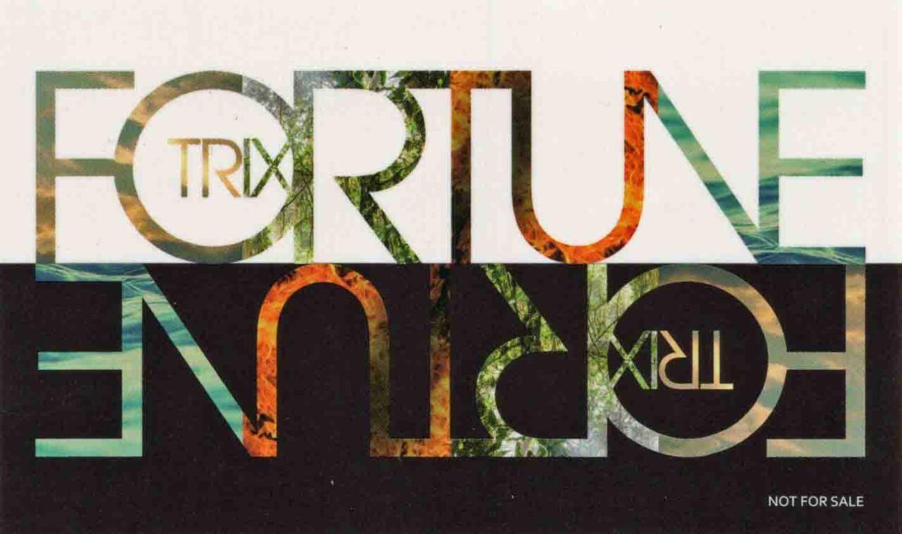 FORTUNE-3