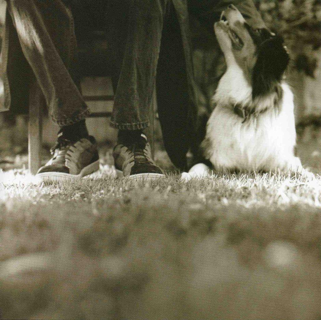 GOOD DOG, HAPPY MAN-3