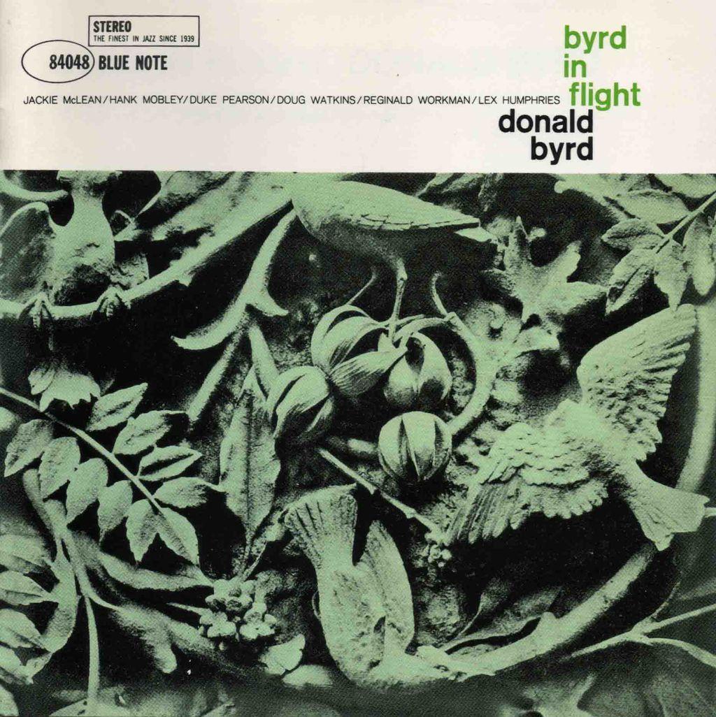 BYRD IN FLIGHT-1