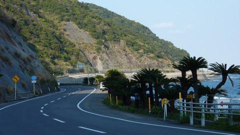 Route220_Nichinan_Coast_01