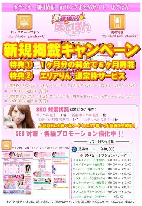 cs2_hotepan_baitaishiryo_hantoshi_ページ_1