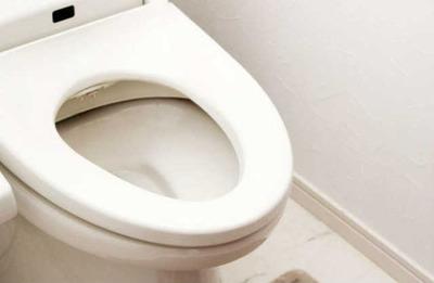 来客前のトイレ掃除