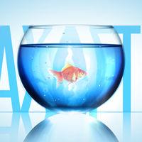 Aetuts_Preview_Fish_Bowl