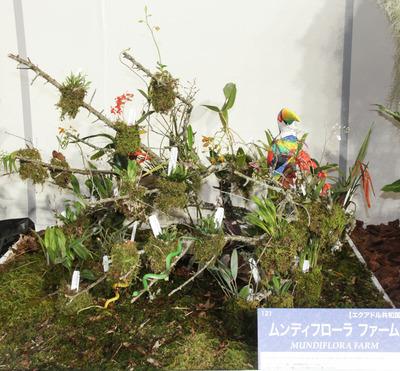 海外テーブルディスプレイ Mundiflora Farm-6816