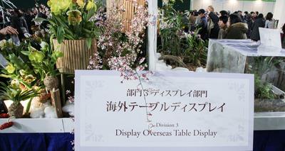 海外テーブルディスプレイ-6801