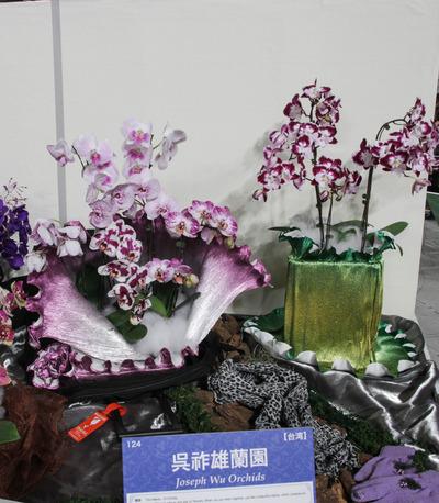 海外テーブルディスプレイ Joseph Wu Orchids-6809