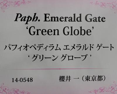2019JGP0215-6927