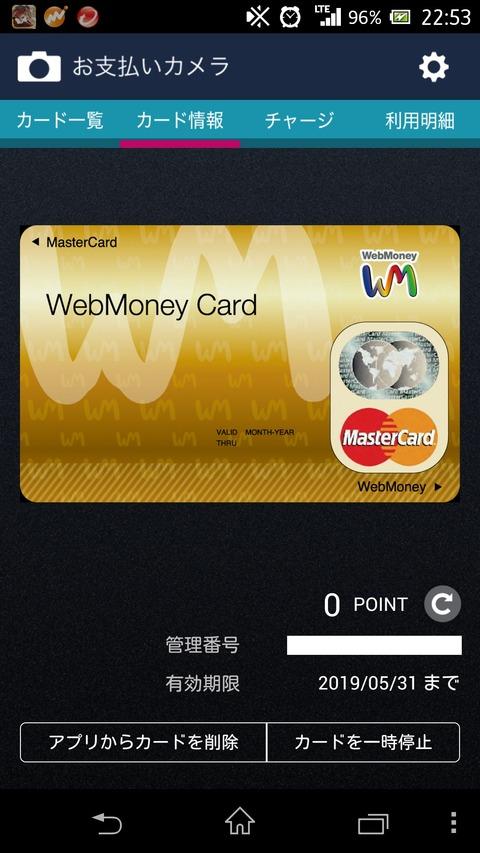 webmoneycard-1