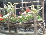 花と木と水