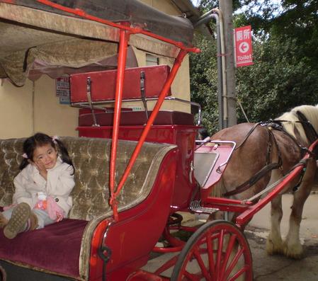 台湾 馬車に乗る女の子