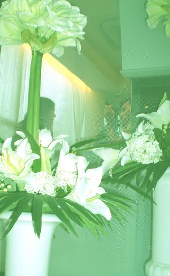 階段下からお花をみる