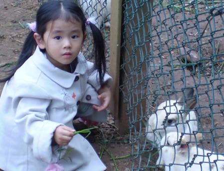 ウサギとうさぎのような女の子
