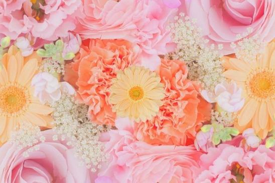 flowers by CHOKORATE