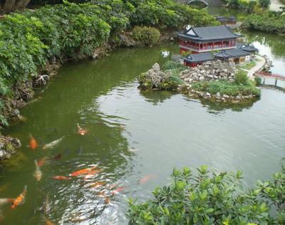 台湾 小さな国々7