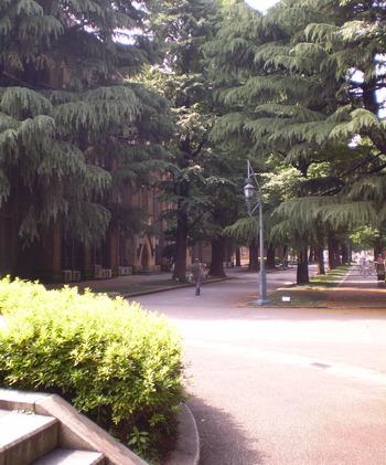 キャンパス内のストリート