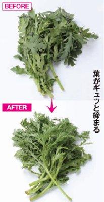 http://livedoor.blogimg.jp/affiri009-001/imgs/5/1/5163257a.jpg