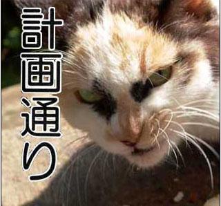 https://livedoor.blogimg.jp/affiri009-001/imgs/e/c/ecb0ace1.jpg