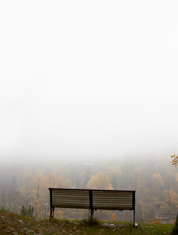 DM_bench&fog
