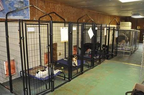Chautauqua_County_Animal_Shelter__KS_