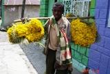 マスカルの花売り少年