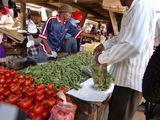 zimbabwe2009 090