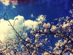 2014-04-05-14-41-21