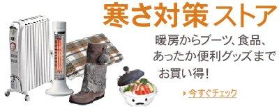 cold_season_store_letterbox_c