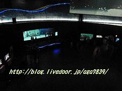 P12100891