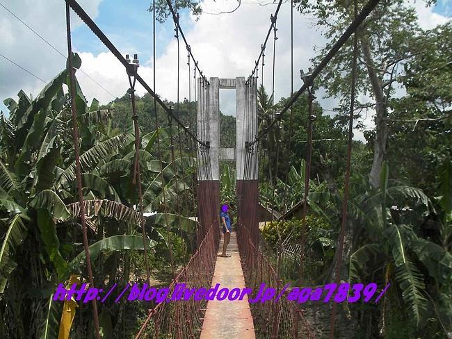 20100725_213310266
