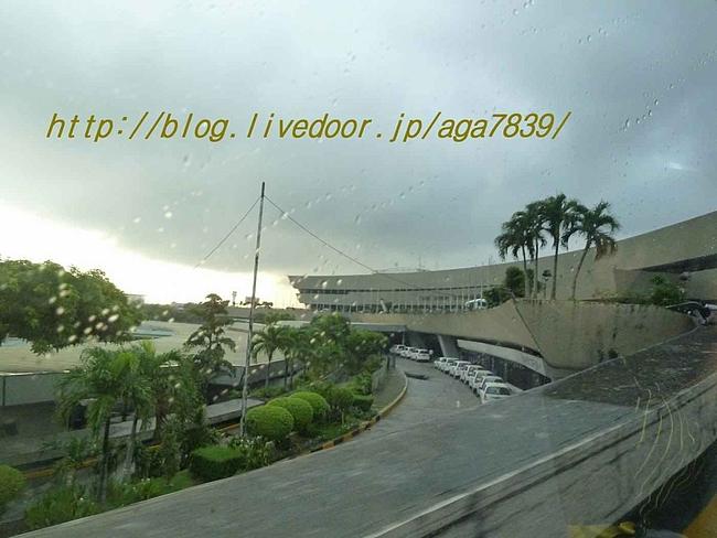 P12208341