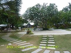 P12002901