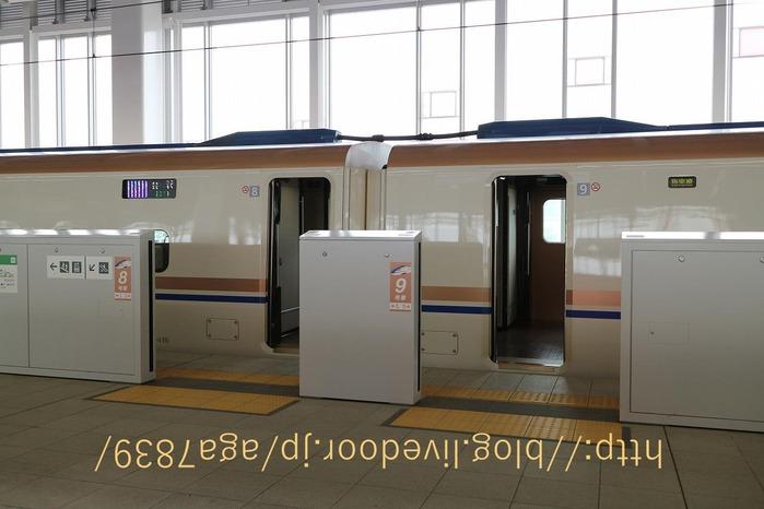 IMG_3446